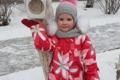 pokormite_ptic_zimoi_1