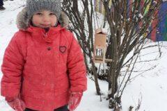 pokormite_ptic_zimoi_3