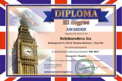 diploms_english_8
