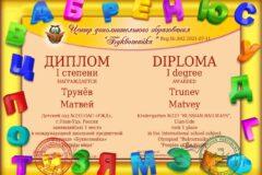 diplom_7
