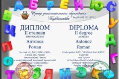 diplom_8